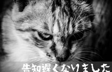 20160131_gamelabo01.jpg